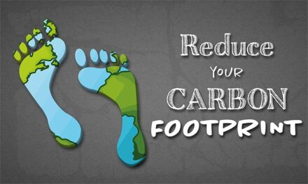 Carbon Footprint, 5 Really Simple Ways To Reduce Yours