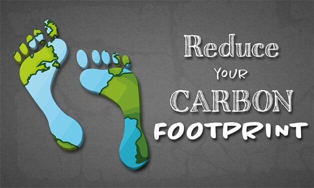Carbon Footprint, 5 Really Simple Ways To Reduce Your
