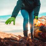 5 Environmental Myths People Believe